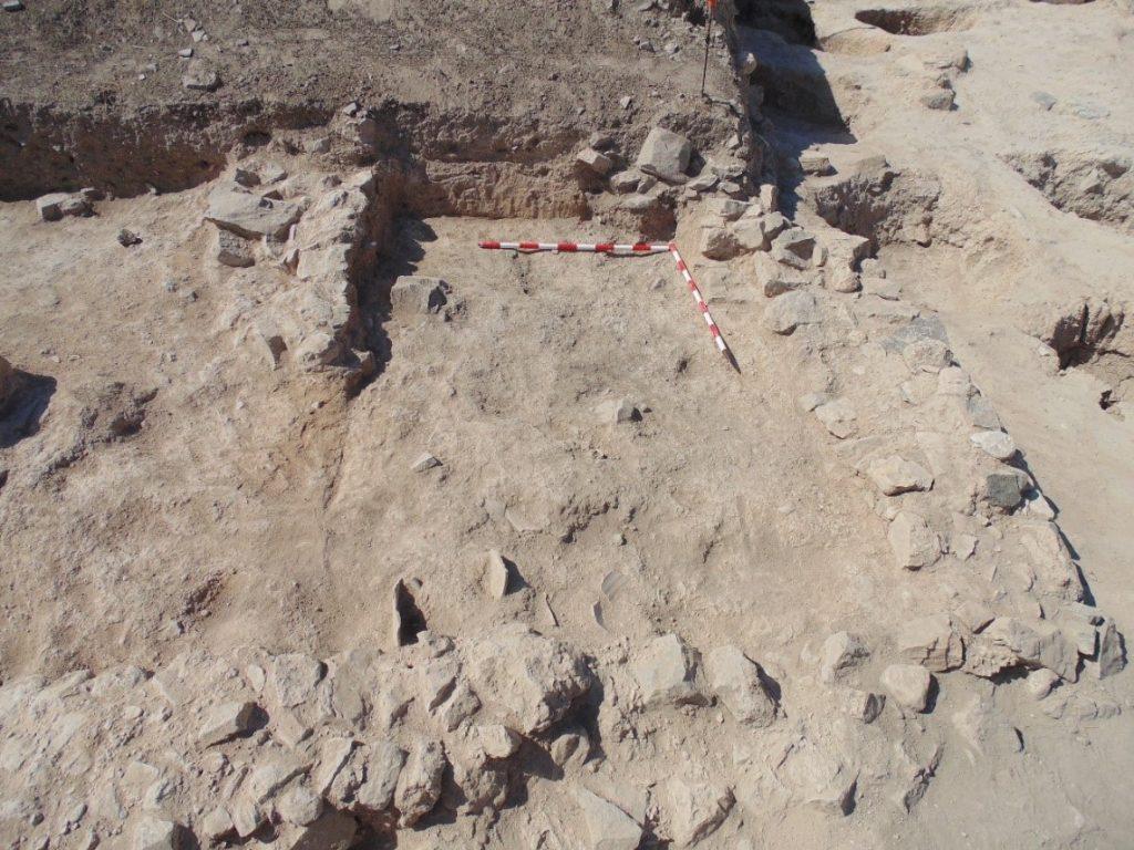 Nuestros servicios Excavaciones arqueológicas